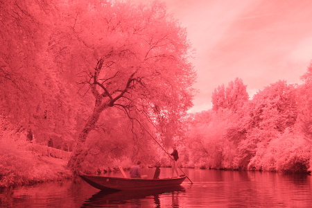 infrared image out of the camera